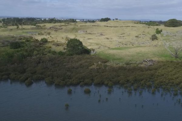 ihumatao-stonefields-2
